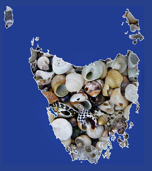molluscs of Tasmania